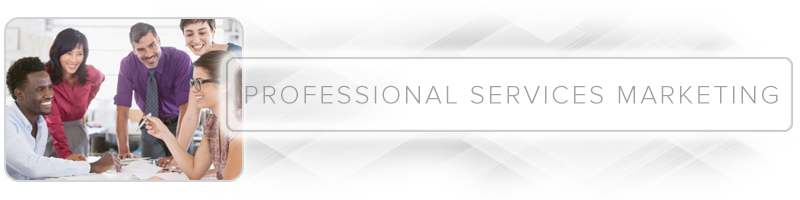 professional services B2B marketing